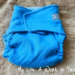 Review: Hybrid Pocket Fitted Diaper by Poodelum & Missy Kate