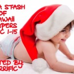 CLOSED Giveaway: Win a Stash of Kawaii Diapers Dec. 1-15