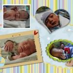 Jeremiah Newborn Collage 150x150 CLOSED Giveaway: Two Lumps of Sugar folding storage bin, 8/31 9/14