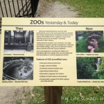 A Family Outing: The Virginia Zoo
