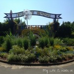 A Family Outing: Norfolk Botanical Gardens